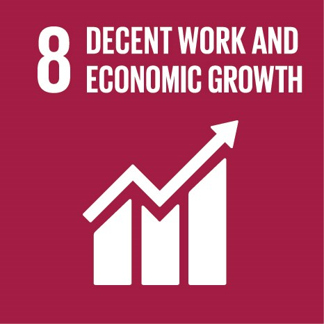 Decent work and economic growth 1