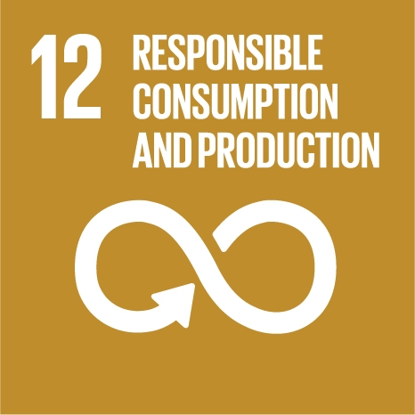 17-12-responsible-consumption-and-production.jpg